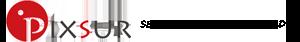 Pixsur Iris Recognition Logo